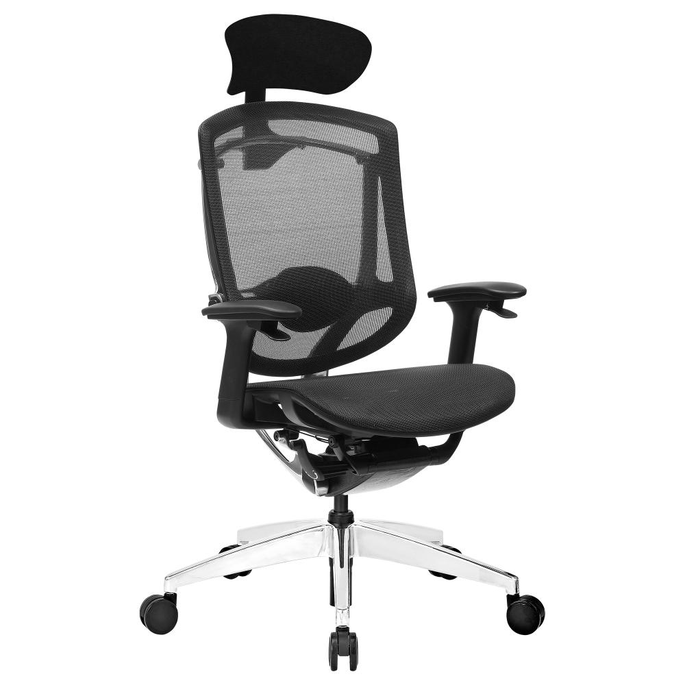 Sensational Eg950 Ergonomic Chair Spc Gear Creativecarmelina Interior Chair Design Creativecarmelinacom
